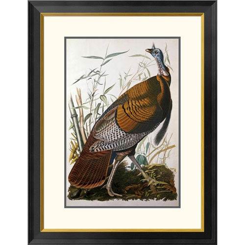 Global Gallery Wild Turkey, Male By John James Audubon, 32 X 24-Inch Wall Art