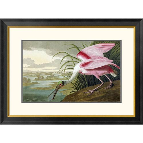 Global Gallery Roseate Spoonbill By John James Audubon, 23 X 32-Inch Wall Art