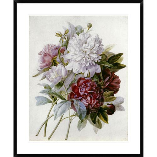 Global Gallery A Bouquet Of Red, Pink And White Peonies By Pierre Joseph Redoute, 36 X 29-Inch Wall Art