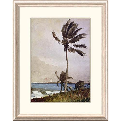 Global Gallery Palm Tree Nassau By Winslow Homer, 30 X 23-Inch Wall Art