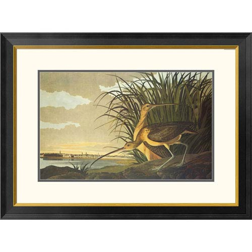 Global Gallery Long Billed Curlew By John James Audubon, 23 X 32-Inch Wall Art