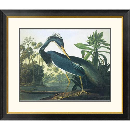 Louisiana Heron By John James Audubon, 30 X 34-Inch Wall Art