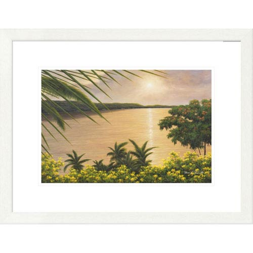 Global Gallery Wonder Of The Tropics By Diane Romanello, 20 X 26-Inch Wall Art