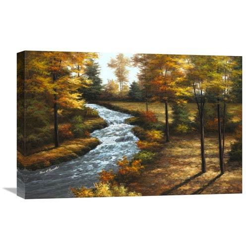 Global Gallery Roaring Brook By Diane Romanello, 24 X 16-Inch Wall Art
