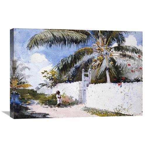 Global Gallery A Garden In Nassau By Winslow Homer, 30 X 20-Inch Wall Art