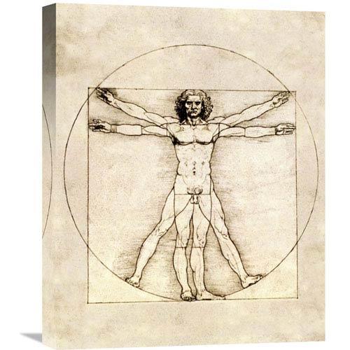 Global Gallery Proportions Of The Human Figure By Leonardo Da Vinci, 17 X 22-Inch Wall Art
