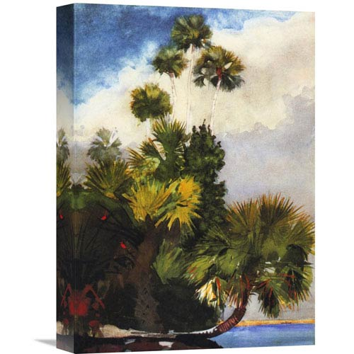 Global Gallery Palm Trees Florida By Winslow Homer, 11 X 16-Inch Wall Art
