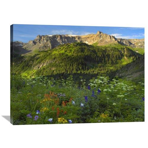 Global Gallery Wildflower Meadow Looking Towards Mount Sneffels Wilderness, Yankee Boy Basin, Colorado By Tim Fitzharris, 30