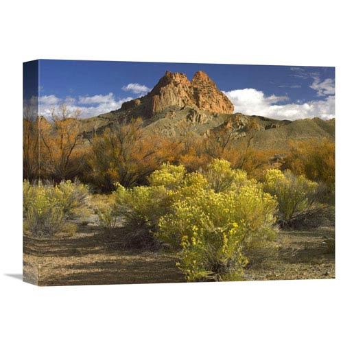 Global Gallery Mitten Rock, New Mexico By Tim Fitzharris, 12 X 16-Inch Wall Art