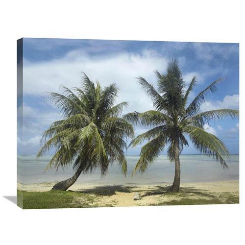 Global Gallery Palm Trees, Agana Beach, Guam By Tim Fitzharris, 24 X 32-Inch Wall Art
