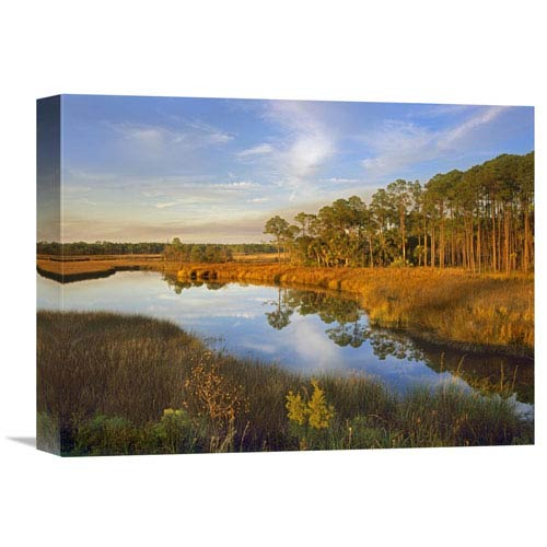 Global Gallery Lake Near Apalachicola, Florida By Tim Fitzharris, 12 X 16-Inch Wall Art