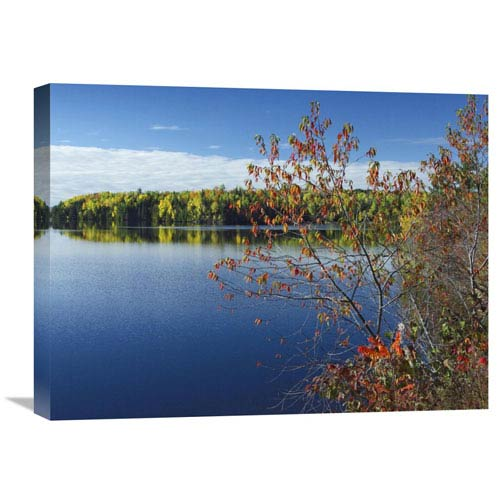 Global Gallery Tobique River, New Brunswick, Canada By Tim Fitzharris, 18 X 24-Inch Wall Art