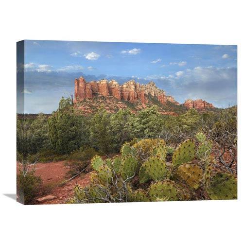 Global Gallery Coffee Pot Rock Near Sedona, Arizona By Tim Fitzharris, 18 X 24-Inch Wall Art