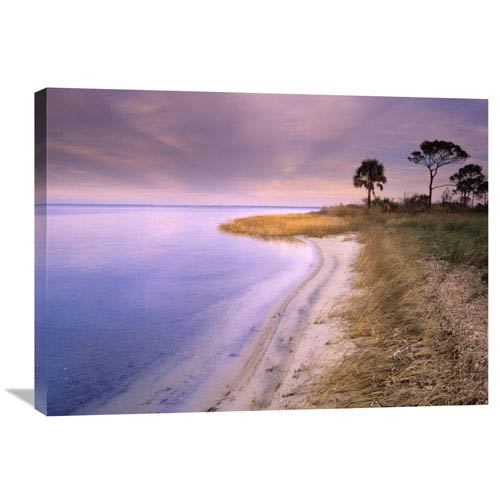 Global Gallery Beach Along Saint Josephs Bay, Florida By Tim Fitzharris, 24 X 32-Inch Wall Art