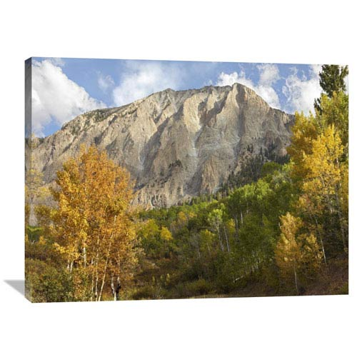 Global Gallery Marcellina Mountain Near Crested Butte, Colorado By Tim Fitzharris, 30 X 40-Inch Wall Art
