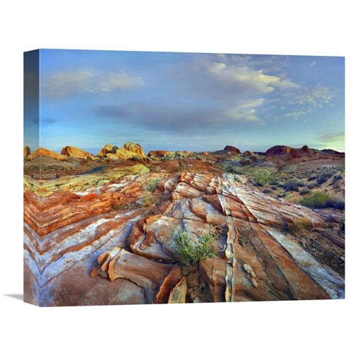 Global Gallery Rainbow Vista, Valley Of Fire State Park, Nevada By Tim Fitzharris, 13 X 16-Inch Wall Art