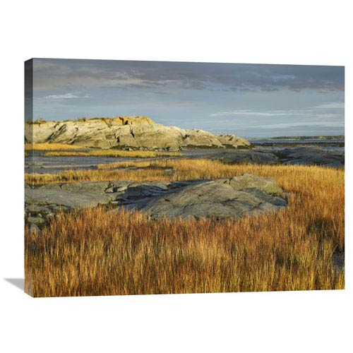 Global Gallery Tidal Marsh, Riviere Trois Pistoles, Quebec, Canada By Tim Fitzharris, 24 X 32-Inch Wall Art