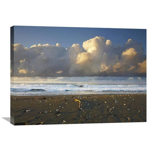 Global Gallery Beach And Waves, Corcovado National Park, Costa Rica By Tim Fitzharris, 24 X 32-Inch Wall Art