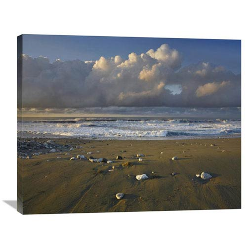 Global Gallery Beach And Waves, Corcovado National Park, Costa Rica By Tim Fitzharris, 28 X 35-Inch Wall Art