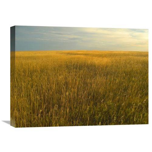 Global Gallery Upper Prairie In Badlands National Park, South Dakota By Tim Fitzharris, 18 X 24-Inch Wall Art