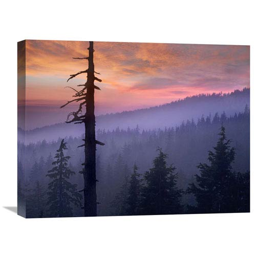 Global Gallery Sunset Over Forest, Crater Lake National Park, Oregon By Tim Fitzharris, 18 X 24-Inch Wall Art