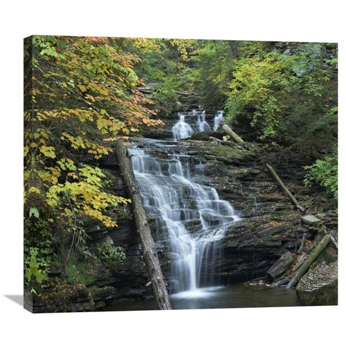 Global Gallery Delaware Falls, Ricketts Glen State Park, Pennsylvania By Tim Fitzharris, 26 X 30-Inch Wall Art