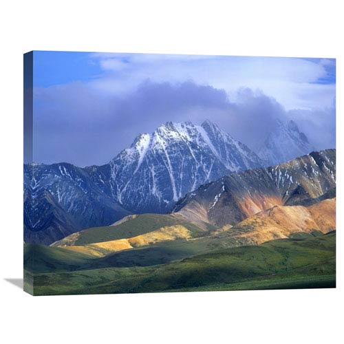 Global Gallery Alaska Range And Foothills, Denali National Park, Alaska By Tim Fitzharris, 22 X 28-Inch Wall Art