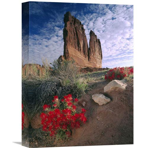Global Gallery Paintbrush And The Organ Rock, Arches National Park, Utah By Tim Fitzharris, 16 X 12-Inch Wall Art