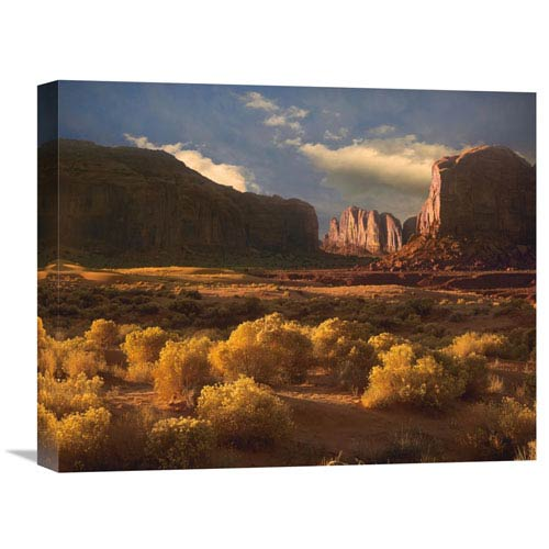 Global Gallery Camel Butte Rising Out Of Desert, Monument Valley, Arizona By Tim Fitzharris, 16 X 20-Inch Wall Art