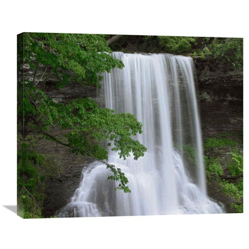 Global Gallery Cascading Waterfall In Jefferson National Forest, Virginia By Tim Fitzharris, 24 X 30-Inch Wall Art