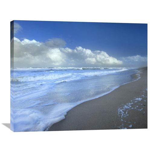 Global Gallery Storm Cloud Over Beach, Canaveral National Seashore, Florida By Tim Fitzharris, 28 X 35-Inch Wall Art