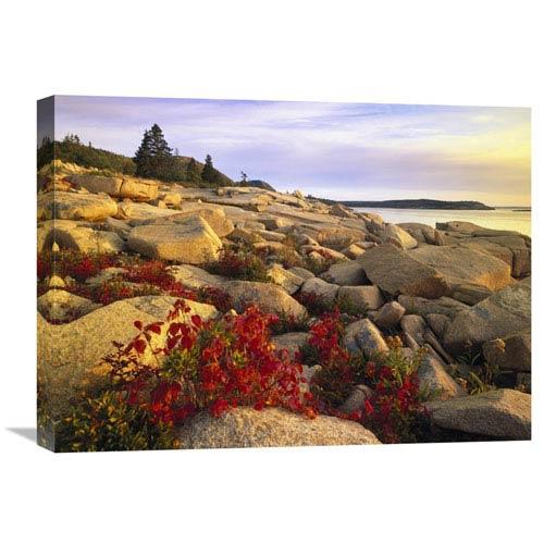 Global Gallery Atlantic Coast Near Thunder Hole, Acadia National Park, Maine By Tim Fitzharris, 18 X 24-Inch Wall Art