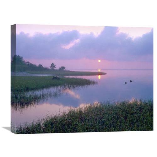 Global Gallery Marsh At Sunrise Over Eagle Bay, St Joseph Peninsula, Florida By Tim Fitzharris, 18 X 24-Inch Wall Art