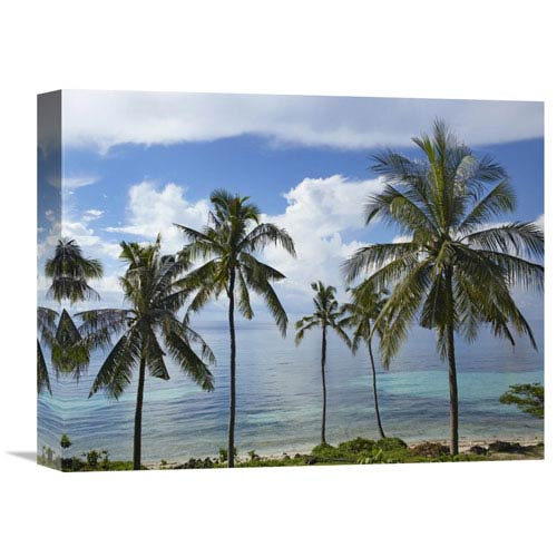 Global Gallery Coconut Palm Trees, Bikini Beach, Panglao Island, Philippines By Tim Fitzharris, 12 X 16-Inch Wall Art