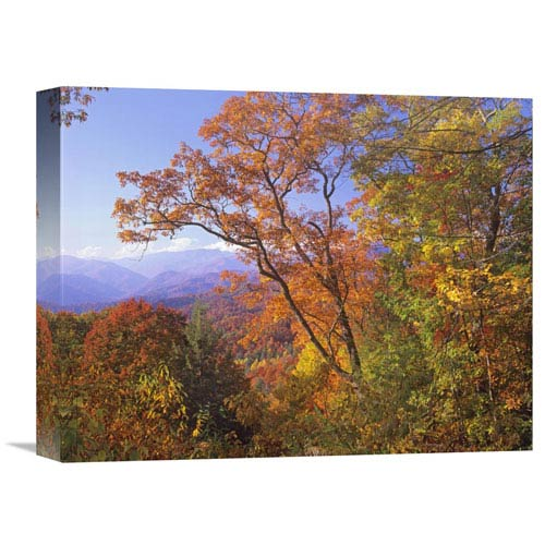 Global Gallery Great Smoky Mountains From, Blue Ridge Parkway, North Carolina By Tim Fitzharris, 12 X 16-Inch Wall Art