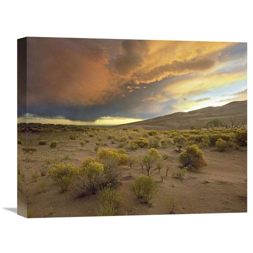 Global Gallery Storm Clouds Over Great Sand Dunes National Monument, Colorado By Tim Fitzharris, 16 X 20-Inch Wall Art