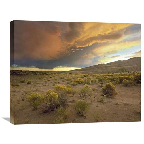 Global Gallery Storm Clouds Over Great Sand Dunes National Monument, Colorado By Tim Fitzharris, 22 X 28-Inch Wall Art