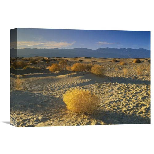 Global Gallery Mesquite Flat Sand Dunes, Death Valley National Park, California By Tim Fitzharris, 12 X 16-Inch Wall Art