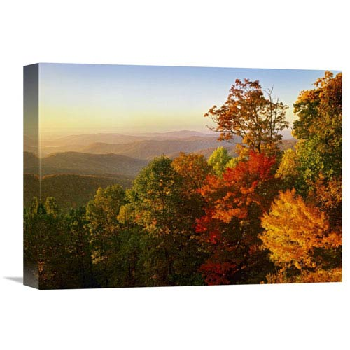 Global Gallery Blue Ridge Mountains From Bluff Mountain Overlook, North Carolina By Tim Fitzharris, 12 X 16-Inch Wall Art