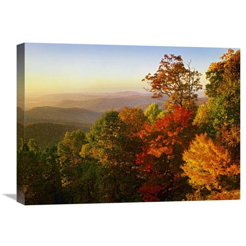 Global Gallery Blue Ridge Mountains From Bluff Mountain Overlook, North Carolina By Tim Fitzharris, 18 X 24-Inch Wall Art