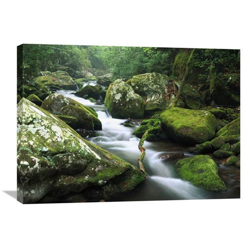 Global Gallery Roaring Fork River, Great Smoky Mountains National Park, Tennessee By Tim Fitzharris, 24 X 32-Inch Wall Art