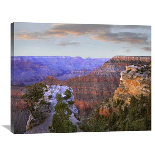 Global Gallery Wotans Throne From South Rim, Grand Canyon National Park, Arizona By Tim Fitzharris, 28 X 35-Inch Wall Art