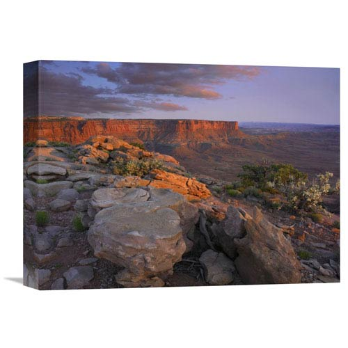 Global Gallery View From The Green River Overlook, Canyonlands National Park, Utah By Tim Fitzharris, 12 X 16-Inch Wall Art