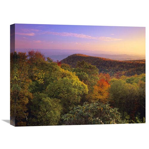 Global Gallery Blue Ridge Mountains With Deciduous Forests In Autumn, North Carolina By Tim Fitzharris, 18 X 24-Inch Wall Art