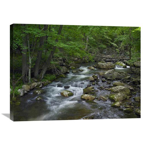 Global Gallery Little Stony Creek Flowing Through Jefferson National Forest, Virginia By Tim Fitzharris, 24 X 32-Inch Wall