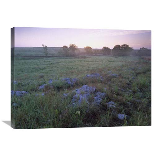 Global Gallery Misty Morning Over Prairie, Tallgrass Prairie National Preserve, Kansas By Tim Fitzharris, 24 X 32-Inch Wall