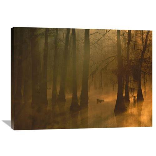 Global Gallery Mallard Pair In Cypress Swamp, Calcasieu River, Lake Charles, Louisiana By Tim Fitzharris, 30 X 40-Inch Wall