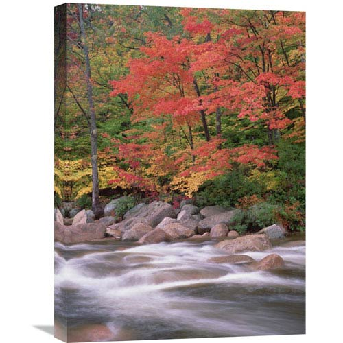 Global Gallery Autumn Along Swift River, White Mountains National Forest, New Hampshire By Tim Fitzharris, 24 X 18-Inch Wall