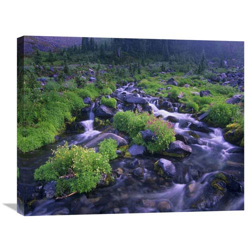 Global Gallery Paradise River With Wildflowers, Mount Rainier National Park, Washington By Tim Fitzharris, 22 X 28-Inch Wall