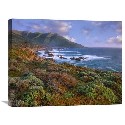 Global Gallery Cliffs And The Pacific Ocean, Garrapata State Beach, Big Sur, California By Tim Fitzharris, 22 X 28-Inch Wall